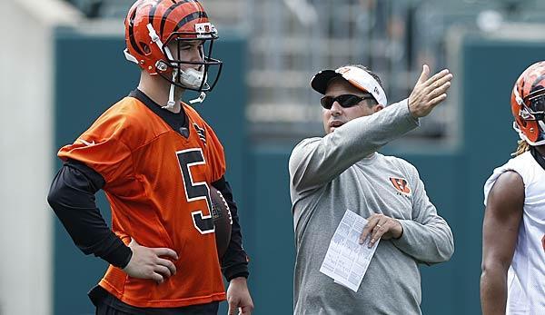 NFL: Bengals fire offensive coordinator Zampese