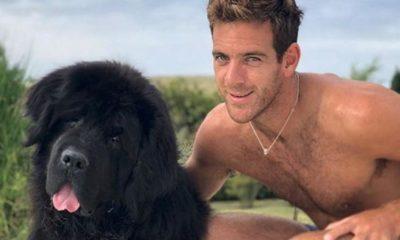 ATP: Juan Martin del Potro mourns dog Cesar